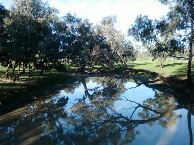 Warrego River at Charleville, Queensland Sunshine State Road Trip