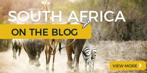 South Africa on the Blog