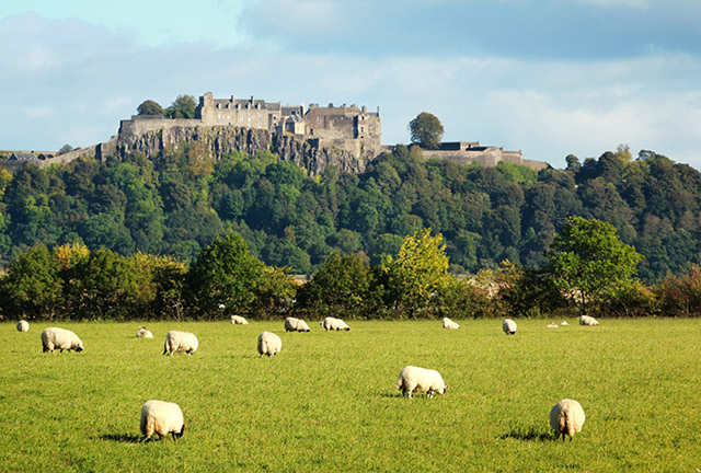 Stirling Castle in Scotland - Glasgow Day Trips